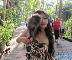 Mono, quitate las manos.....