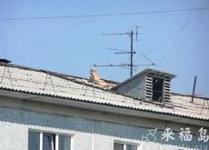 自己楼上也可以晒上日光浴