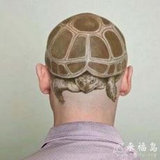 sea turtle hair