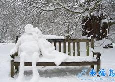 浪漫的雪地邂逅