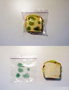 自从用了这个袋子,我的夹心面包安全了