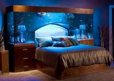 想体验天天睡在海底的感觉吗?