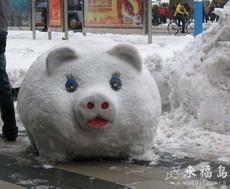 Cute Snowpig