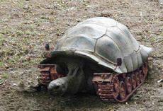无敌坦克乌龟