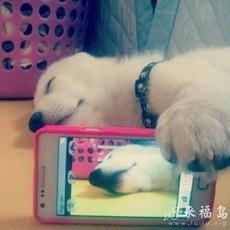 Mirror Fail: Caught Me Sleeping