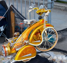 A luxury tricycle