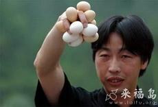 再多的蛋我也能一舉拿下