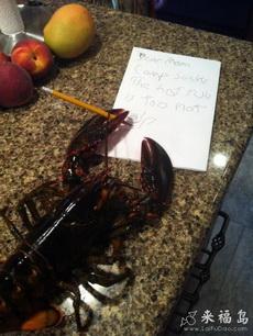 小龙虾也是有文化的