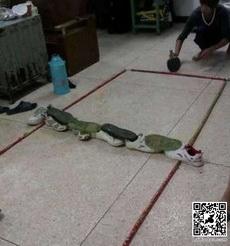 中国乒乓球世界第一的原因