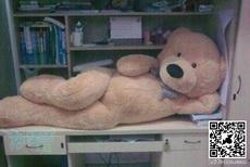 妖嬈的玩具熊
