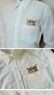 这个衬衣,太丧心病狂了