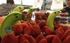 水果店老板也太有才了!