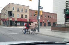 给跪了,没想到骑自行车也能运沙发!