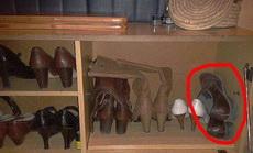 这就是男人的鞋子的待遇!