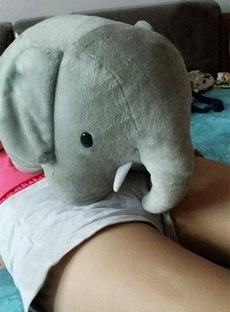 菇凉,这大象这样放真的好么?