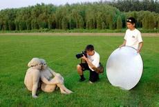 只为拍一张与众不同的结婚照