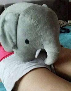 小象,放開那個妹子,讓我來