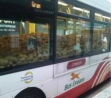 这是坐公交车就送土豆的节奏么