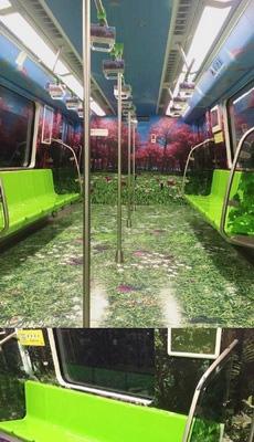 开往春天的地铁