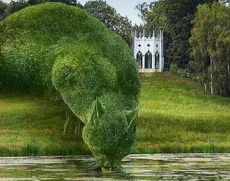 这个园艺师太屌了!