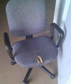 內涵的椅子