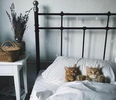 帮我们关下灯,我们要睡觉了