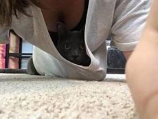 盯着猫咪看了好久