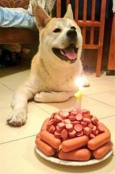 生日快乐!!!!!!!
