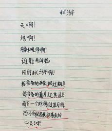 五年级男生写的诗,过于真实了