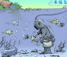 水被污染了鱼怎么办?