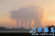 形似动物的云-猪