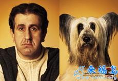 人和宠物1