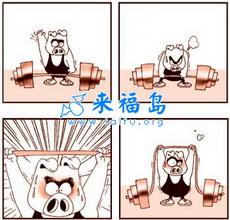 宝贝小猪迪四格漫画87