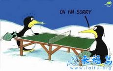 尷尬的企鵝