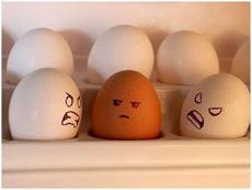 雞蛋也有種族歧視