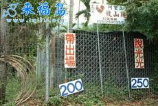 目前臺灣最新的叫雞行情