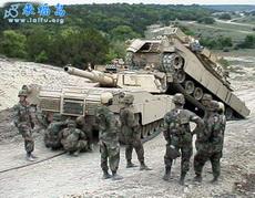 坦克也到發情期了