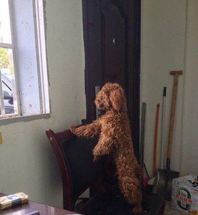 美女们等等我,我一会就能出去了!