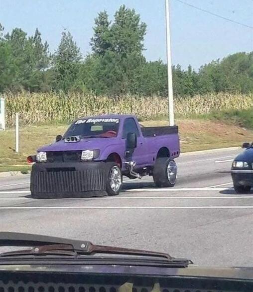 公路惊现紫薯灭霸