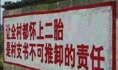 村支书精中报国
